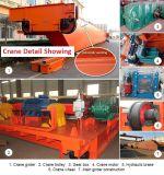 Op zwaar werk berekend Elektrisch Stevig Metaal die de Gegoten Fabrikant van de Fabriek van de Kraan opheffen