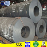 PPGI SGCC Galvanized Steel Strip dans Coils (SGCC)