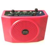 Amplificatore portatile di voce del USB FM Bluethooth
