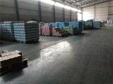 Parafusos da gipsita, parafuso do Drywall de China