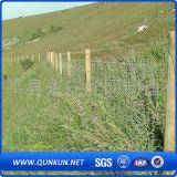 Kuh-Bauernhof-Schutz galvanisierter Vieh-Zaun ISO9001-2008