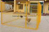 Grand chenil de crabot ou cage de crabot enduit par poudre de bonne qualité à vendre (XMM-DC0)