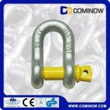 G210 Nosotros Tipo Tornillo Pin Ancla Manilla / Drop Forjado Dee Shackle / Alloy Chain Shackle