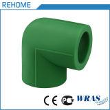 Accessori per tubi d'ottone dell'inserto PPR del tubo di BACCANO PPR