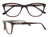 가장 새로운 광학 프레임 여자 안경알 프레임