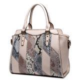Form-Schlange-Beplankungsnaht-örtlich festgelegte Form sackt PU-Frauen-Handtaschen ein