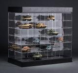 모델 자동차를 위한 아크릴 상자