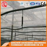 Casa verde de vidro galvanizada industrial de frame de aço