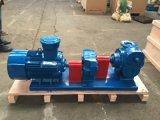 Pompe de palette Yb80 avec le moteur