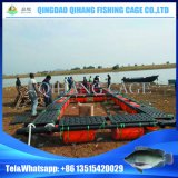 HDPE flottant cultivant la cage de réseau de poisson jeune de poissons