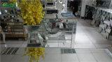 装飾的な現代高い花のガラスによって映されるつぼ