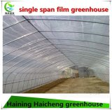 고품질은 야채를 위한 온실을 터널을 판다