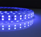 Doppio indicatore luminoso di RGB Strip/LED di riga 5050