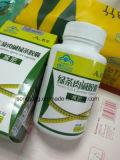 Qualitäts-fetter Brenner dünner schneller L-Carnitin grüner Tee, der Kapseln abnimmt