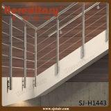 Het binnen Satijn beëindigt de Leuning van het Roestvrij staal voor de Trede van het Hotel (sj-H1841)