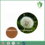 Фабрика сразу поставляет 1%-10% флавонов; Порошок выдержки одуванчика 20% Phytosterols