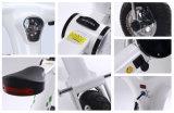 電気スクーターを折る中国の安く小型12インチ
