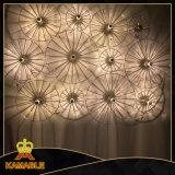 Indicatore luminoso decorativo della parete del metallo di progetto dell'hotel (KW17-121)