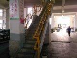 De hoge Ladder van de Capaciteit FRP/GRP van de Lading met Pultrusion Profielen