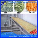 Multi машина для просушки баклажана Drying оборудования пояса слоя