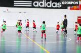 Fútbol Indoor/Outdoor/Futsal/Fútbol/pisos de PVC de plástico