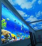 Global Panneau mural brillant jet d'encre UV 3D de l'impression numérique de la machine