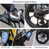 16 Zoll 36V 250W elektrisches Fahrrad mit Shimano 6 Geschwindigkeit faltend