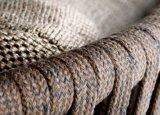 Nuova mobilia di legno del giardino della presidenza della barra dei bistrot dell'accumulazione della corda (WF0612)
