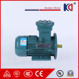 優先価格の三相Atex電気ACモーター