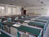 Школа лабораторной мебелью науки Lab стенде лаборатории биологии клетки таблица