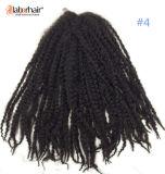 KanekalonのファイバーのMarleyの毛のブレードの100%年のアフリカのねじれたねじれのブレードの総合的な毛の拡張Lbh 019