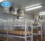Fabriqué en Chine avec la chambre froide pour le fruit, légume