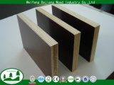 Film Faced Plywood with Poplar Core and Anti-Slipway Film