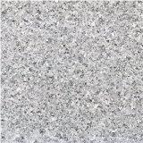 PVCビニールの床の敷物(同質な/異質)