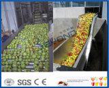 des Birnensaftraumbirnen-Safts der aufbereitenden Maschine der Birne bewölkter Saft