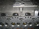 Nta855 de Leiding die van de Norm van het Deel van de Dieselmotor de Zuiger van de Dieselmotor van 3802160 3907163 Cummins draagt