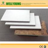 Anti-Wear fácil de limpiar el panel de pared Lamianted HPL MGO el panel de pared