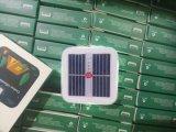 مصنع أصليّة قابل للنفخ شمسيّة [لد] خفيفة بيضاء أو يفجّر هواء زاهية [رشرجبل] بلاستيكيّة مصباح فانوس ضوء