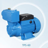 Dbz/TPS/Lqシリーズ電気クリーンウォーターポンプ