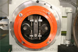 De hete Granulator van het Voer van Cattale van de Schapen van het Varken van de Vissen van het Gevogelte van de Verkoop