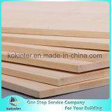 Bambuspanel einlagige 1220*2440*5mm natürliche Farbe horizontal