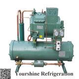 Wassergekühltes kondensierendes Hochtemperaturgerät für Kaltlagerung/kühlen Raum/Kühlraum