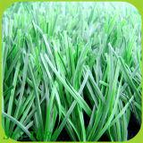 46мм Высота Monofilament искусственных травяных по регби поля