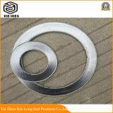 Guarnizione della ferita di spirale della grafite del metallo; Guarnizione esterna ed interna del metallo dell'anello della grafite di spirale della ferita;