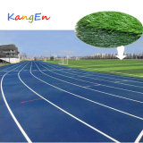 Synthetisch Gras voor het Internationale Gebied van de Voetbal
