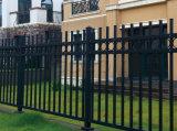 Productos de calidad exterior Hierro forjado Diseño Cerca por un jardín, viviendas, casas, Escuela