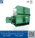 HochspannungsElectromotor, Rahmen WechselstromElectromotor
