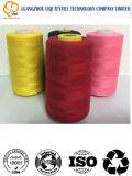 Filato cucirino 100% della tessile del filamento del filetto del ricamo del poliestere 120d/2