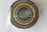 Rolamento da roda do carrinho de boa qualidade Nu305 Rolamento de Rolete