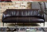 Sofa en cuir cireux, sofa de cuir véritable de l'Europe (Y035)